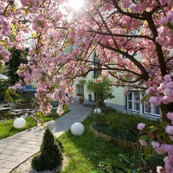 Der schöne garten vorm Hotel Rosenvilla in Salzburg